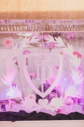 Victoria Secret PINK party houston event planner ice bar with flowers